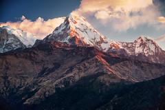 Sunrise, Poon Hill, Annapurna, Nepal (CamelKW) Tags: nepal mountain sunrise trekking annapurna himalayas poonhill poonhilltrek trekkinginthehimalayas sunriseinthehimalayas trektopoonhill