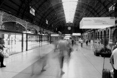 Sydney Central Station (raluistro) Tags: train transport sydney oceania