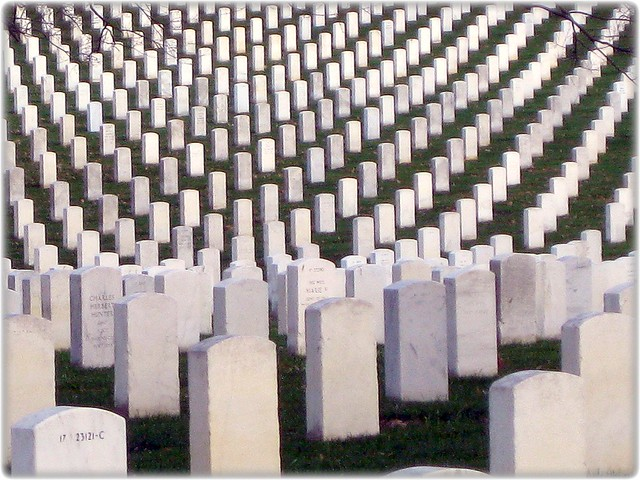 more than 300000 veterans and military casualties from each of the