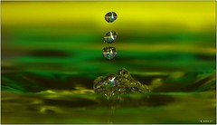 Final Destination [Explored] (-=[Joms]=-) Tags: color macro green water field drops refraction depth hs10 hs11 pnsers