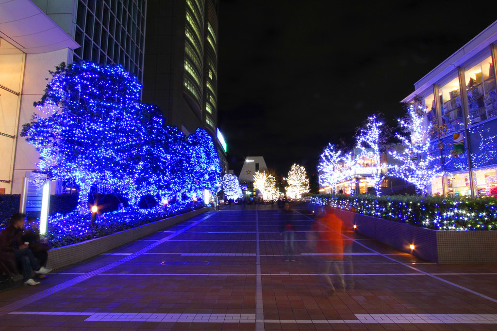 Shinjuku Xmas illumination 2010 (2)