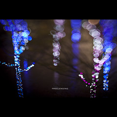 106/365 Freelensing (brandonhuang) Tags: christmas pink blue trees light color colour tree colors night circle lens lights colorful colours dof bokeh free shift colourful tilt circular lensing brandonhuang freelens freelensing
