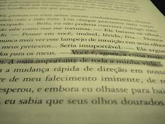 Twilight (debsara_lima) Tags: papel crepusculo livros ocaçadordepipas ameninaqueroubavalivros