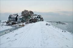 a winter's tale.. (leuntje) Tags: winter snow netherlands day explore marken ijsselmeer markermeer gouwzee rozewerf