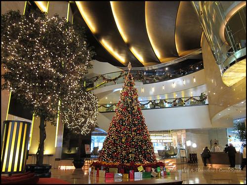 2010-12-08 Shanghai 012P01