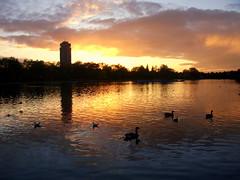 Sunset (Hyde Park) (Sara.Coccoluto.Photography) Tags: naturesfinest top20sunsetsofourhearts ysplix