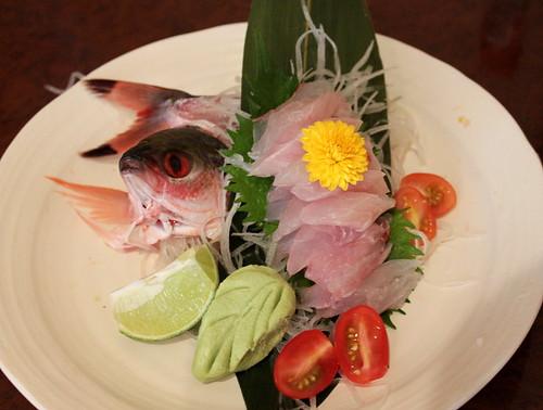 Megumi_gurukin sashimi