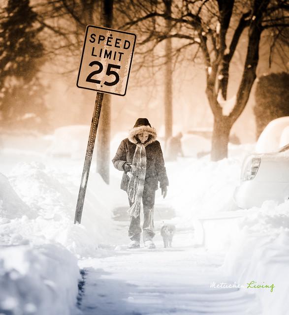 snow2010-32