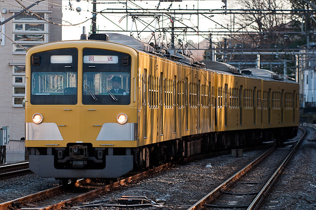 西武鉄道 新101系 239F 廃車回送