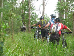 Climbing Mt Samson on a bike