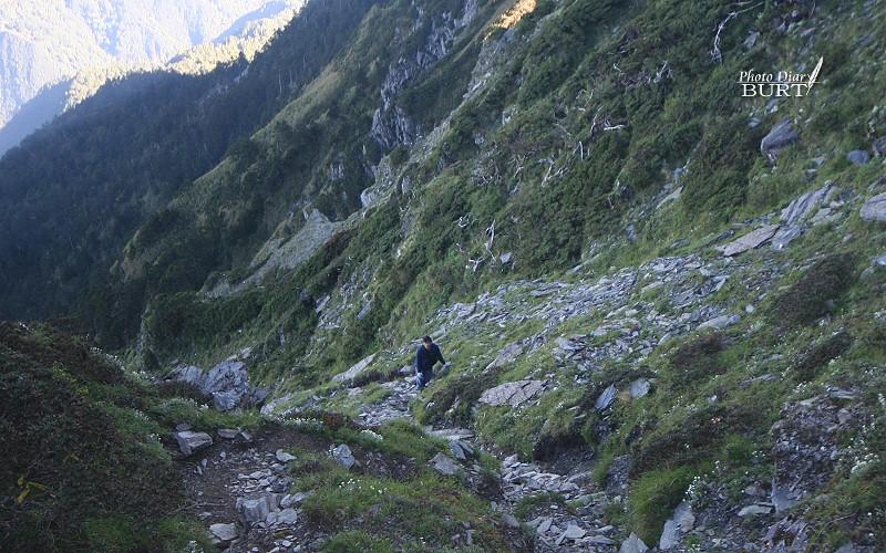 朝奇萊主峰的山徑也是相當陡峭