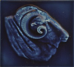 Rams head tile