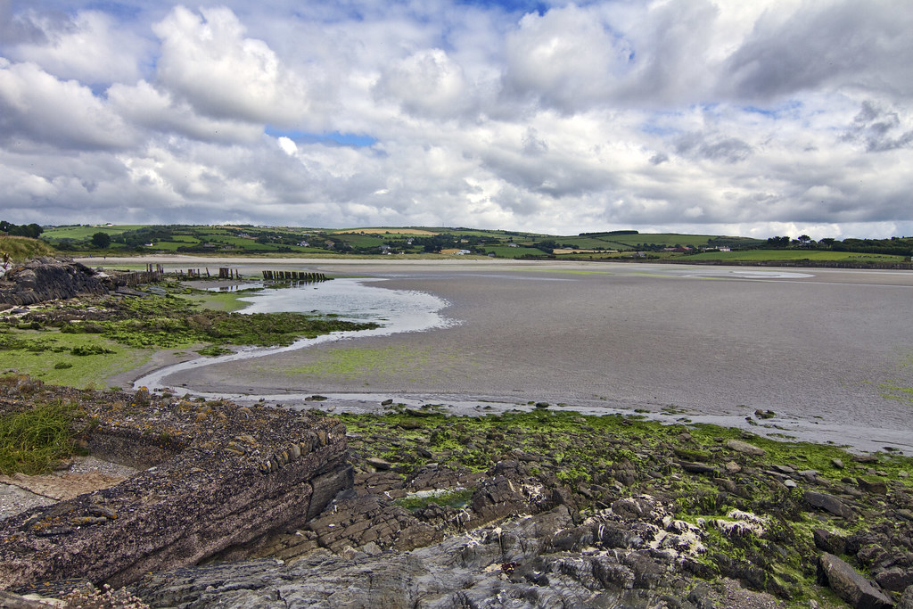 Harbour View near Coolmain #10