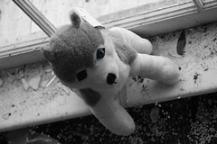 Six Flags New Orleans (Stacey Warnke Photography) Tags: urban dog animal toy la stuffed louisiana decay destruction neworleans hurricane plush sixflags urbex sixflagsneworleans