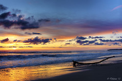 Resting Place (Didenze) Tags: light sunset reflection clouds golden log glow purple smooth explore northbeach sanclemente frontpage depth canon450d didenze