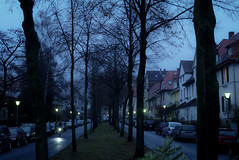 Morgengrauen (grapfapan) Tags: street trees bicycle streetlight gttingen sdstadt schillerstrase lumixzx1