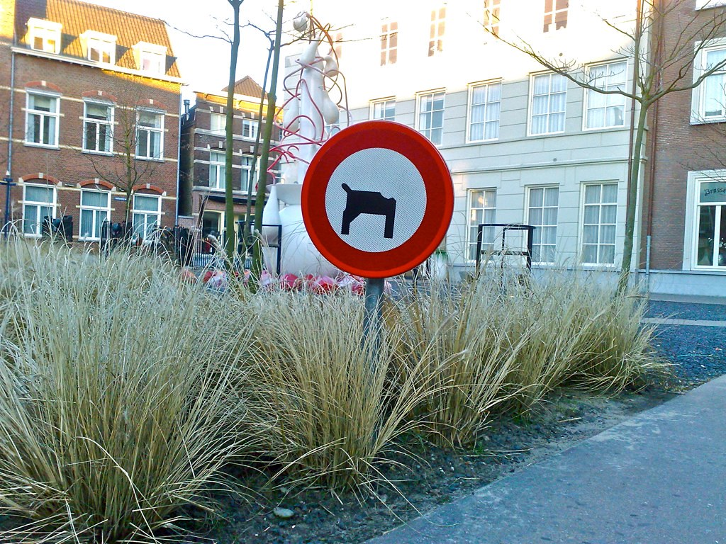 Verboden voor honden zonder hoofd?