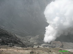 It come  from the centre  of the earth (Toraja Bali) Tags: volcano sulfur bromo kawah belerang