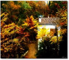 HANSEL Y GRETTEL (nanettesol) Tags: autumn house colors de la casa fuente paseo bosque granada otoo carmen chimenea tristes caseros superlativas