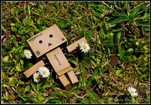 Danbo relaxes in the garden