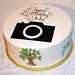Photography cutout cake