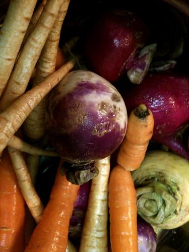 veggie potage