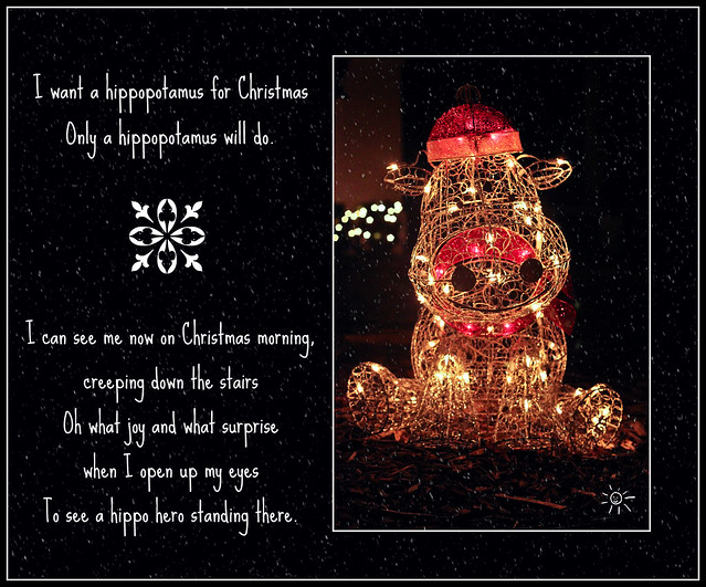 HIPPO FOR CHRISTMAS_TAGGED