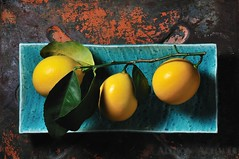 Lemons (Allison Achauer) Tags: above blue stilllife food texture leaves metal three lemon healthy paint branch view top plate fresh explore citrus trio 365 frontpage platter overhead crackle meyer rectangular strobist afsnikkor50mmf14g