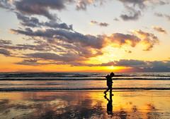 Touch of solitude (ajari) Tags: japan  nikon d300 sigma1850mmf28exdcmacrohsm  child kids sanpo  portrait  human shonan  kanagawa   silhouette photodeco winter  landscape   sea sunset   action