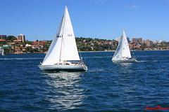 Sailing (lucianomancini) Tags: sea bay sailing sydney australia