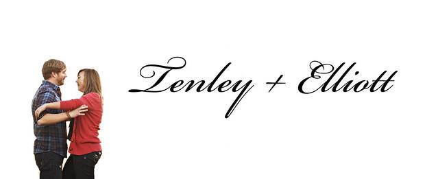 TenleyBlog