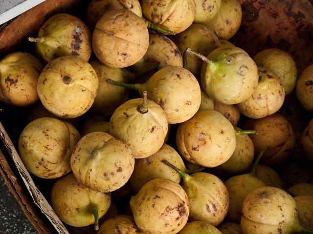 IMG_0259 Nutmeg ,豆蔻