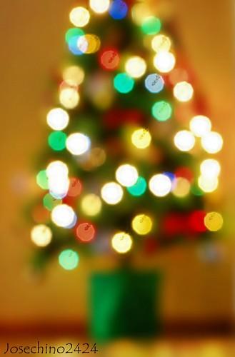 Luces de navidad!!