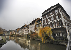 Strasbourg (Mikheil Samkharadze (kesha)) Tags: houses house france reflection tree water yellow strasbourg chanel kesha mikheil kanali berioza arxi saxli anarekli strasburgi samkharadze cyali yviteli safrangeti