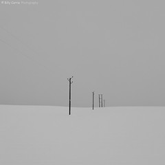 Snow Poles (Billy Currie) Tags: uk winter white snow black ice field landscape mono scotland wooden wire stirling telephone united deep freezing kingdom line pole og freeze electricity electrical telegraph whiteout minimalist telephony stirlingshire welcomeuk