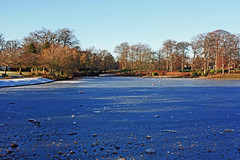 Blue Ice (alphazeta) Tags: park blue trees sunshine pond colours bluesky local icy blueice greatshots topshots photosandcalendar worldwidelandscapes natureselegantshots panoramafotografico theoriginalgoldseal flickrportal
