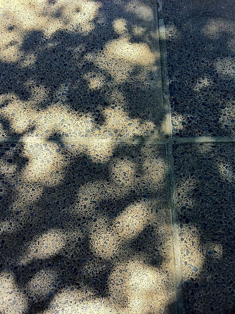 concrete shadows