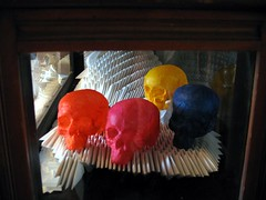 colour collection paper sculpture skulls in glass case (polyscene) Tags: sculpture art paper paperart polly poly verity papersculpture polyscene pollyverity papersculptures