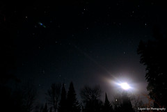 Above My Head (Liquid Ice Photography) Tags: trees snow cold ice night dark stars freezing clear