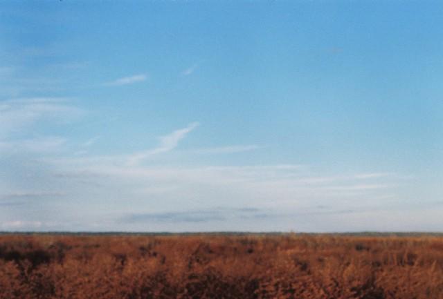 prairie, pentax