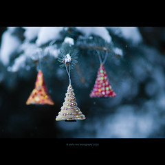 (stella-mia) Tags: christmas xmas winter snow forest canon happy 85mm christmastree explore ornament fir snowing christmasornament merrychristmas frontpage sn happychristmas seasonsgreetings happyholiday merrychristmasandahappynewyear christmasmood canon5dmkii 5dmkii annakrmcke