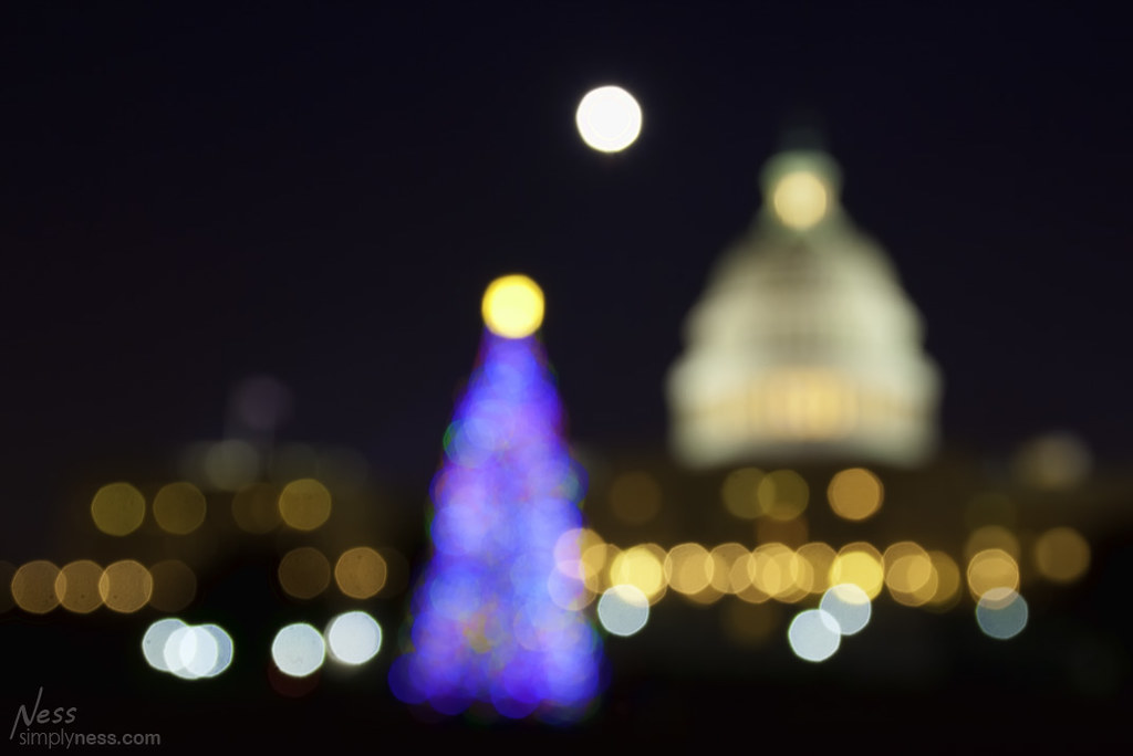 hristmas Tree At The Capitol