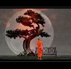 Bonsai and Monk (h.koppdelaney) Tags: life park art digital photoshop peace view symbol buddha religion picture monk buddhism philosophy harmony mind bonsai rest meditation arrival awareness relaxation metaphor enlightenment stillness psyche symbolism psychology archetype conscious koppdelaney truthandillusion