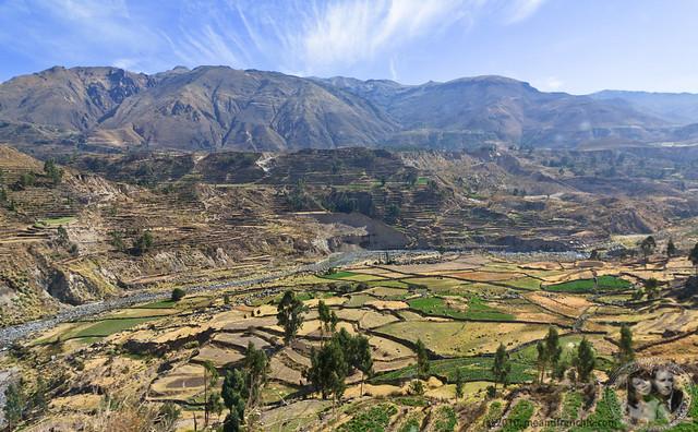 Views of Colca Valley