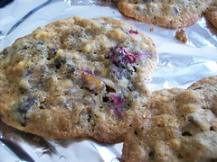 Cranberry Chestnut Cookies (jazzijava) Tags: family food holiday home cooking cookies fruit recipe baking blog italian december photos sweet chocolate egg nuts blogger butter cranberries chestnuts blogged cooked sour tart whitechocolate baked christmascookies tangy shortening whatsmellssogood httpkitchenconfidantecom cranberrychestnutcookies