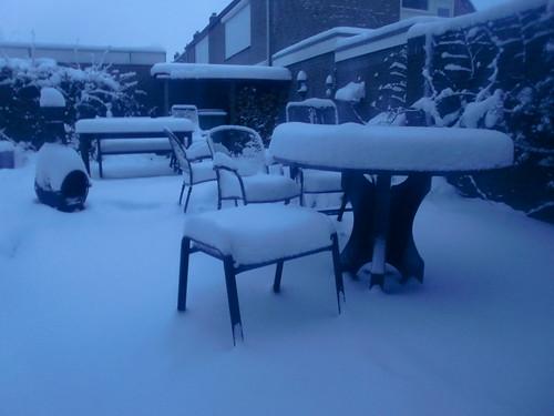 sneeuw in de vroege ochtend