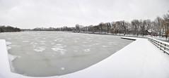 Vijver (Fotogenirger) Tags: winter white snow cold ice frozen pond december bevroren snowy sneeuw wit snowscape vijver winterscape kou ijs koud kessello provinciaaldomein koude provinciedomein sneeuwtapijt