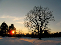 highland park near south (theothermonalisa) Tags: park trees sunset snow color december highlandpark platinumheartaward platinumpeaceaward nearvwm