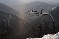 Bükk Mountains (Hungary) - It's snowing_ (๑۩๑ V ๑۩๑) Tags: winter white mountain snow mountains nature hungary bükk magyarország ilobsterit