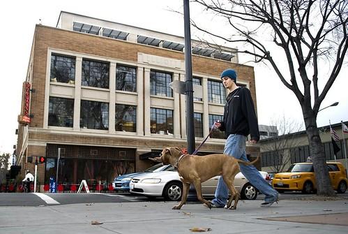 Zak Battaglia walks his dog Kaya past the Elliott Building at 16th and J streets in downtown Sacramento